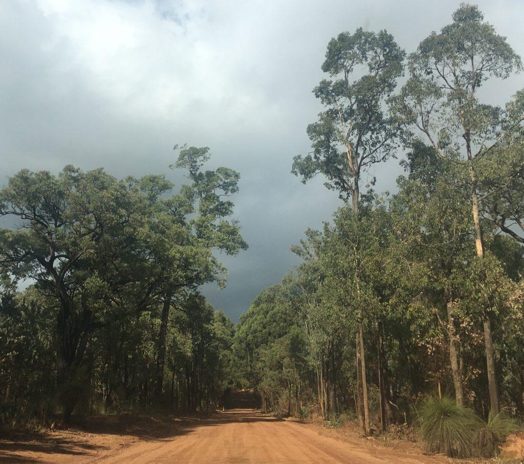 Kalamunda State Forest